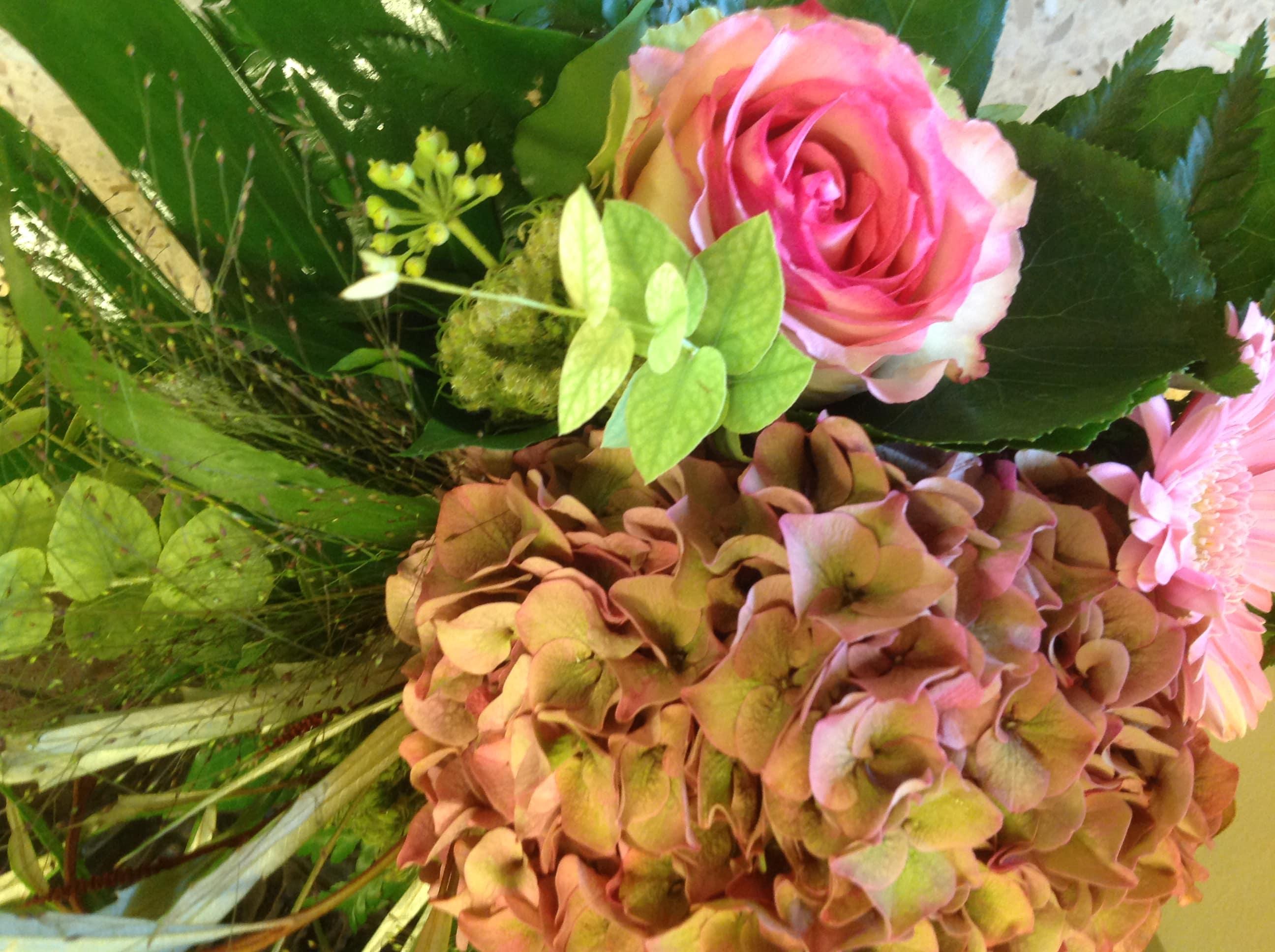 Blumen Magnolia WinterthurFoto 05.10.19, 11 04 12